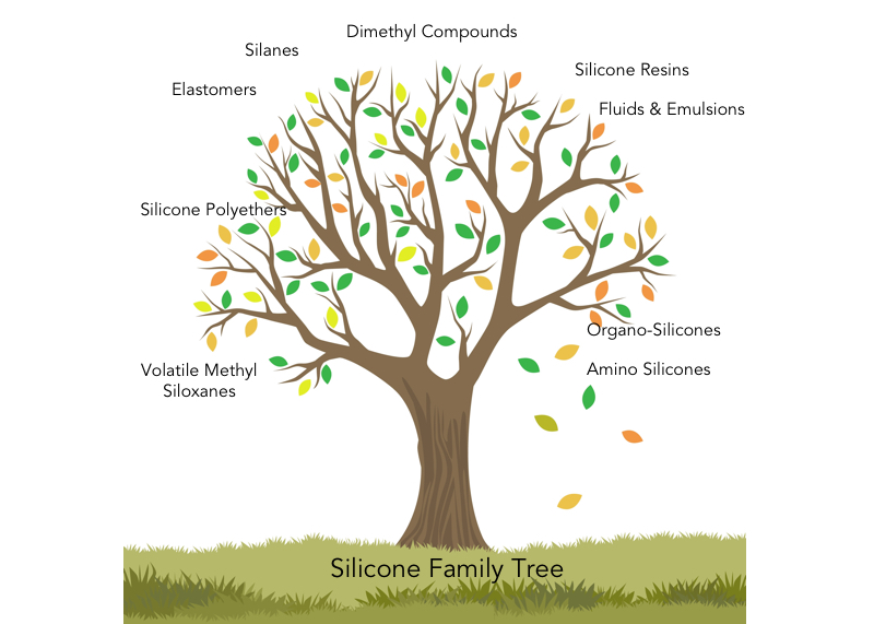 silicone-family-tree.jpg